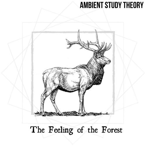The Feeling of the Forest