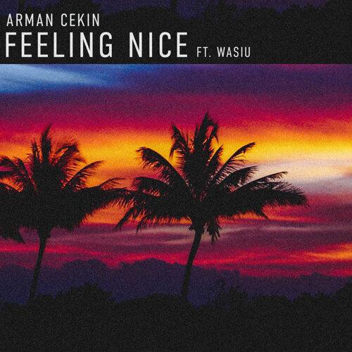 Feeling Nice