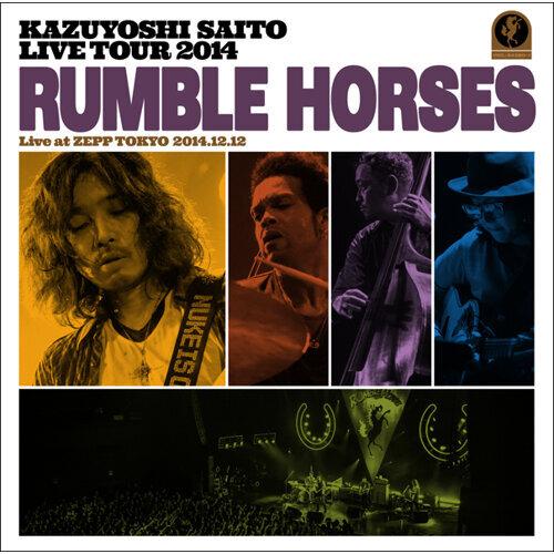 """KAZUYOSHI SAITO LIVE TOUR 2014 """"RUMBLE HORSES"""" Live at ZEPP TOKYO 2014.12.12"""