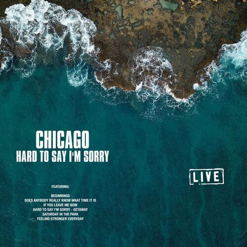 Hard to Say I'm Sorry - Live
