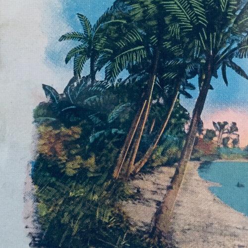 Hawaii Og