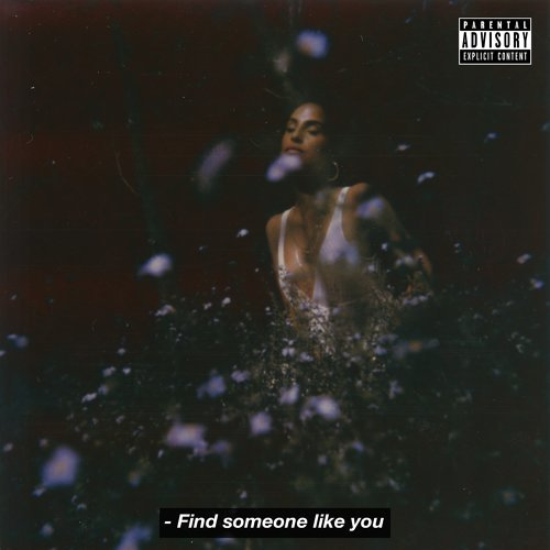 Find Someone Like You