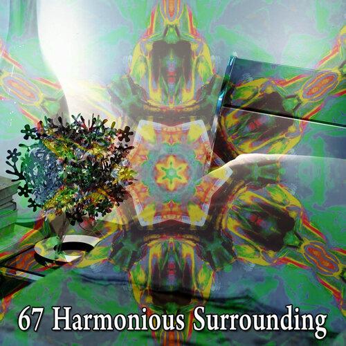67 Harmonious Surrounding