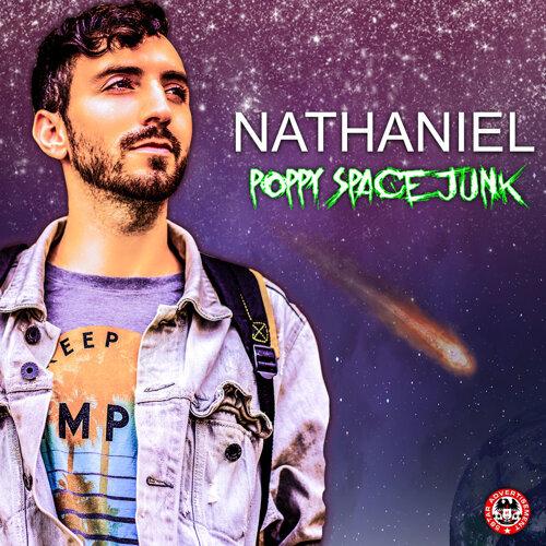 Poppy Space Junk