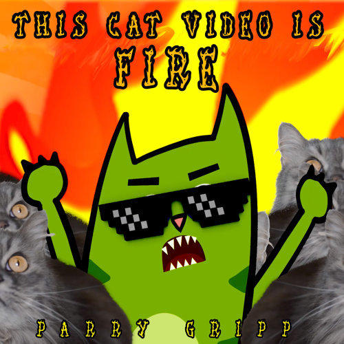 This Cat Video Is Fire