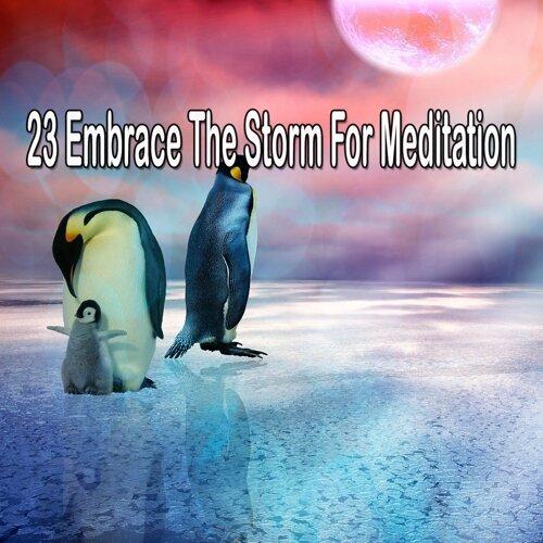 Rain Sounds & Nature Sounds - 23 Embrace the Storm for