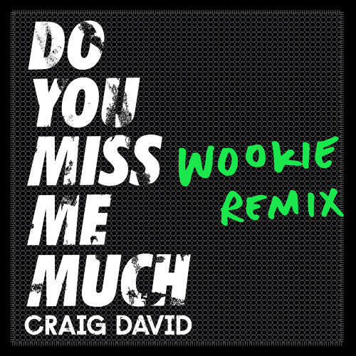Do You Miss Me Much - Wookie Remix
