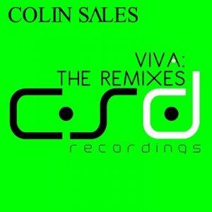 Viva - The Remixes