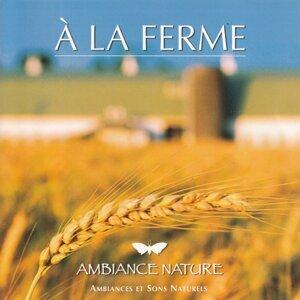 Ambiance nature : à la ferme