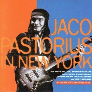 In New York - Recorded Live November 1985