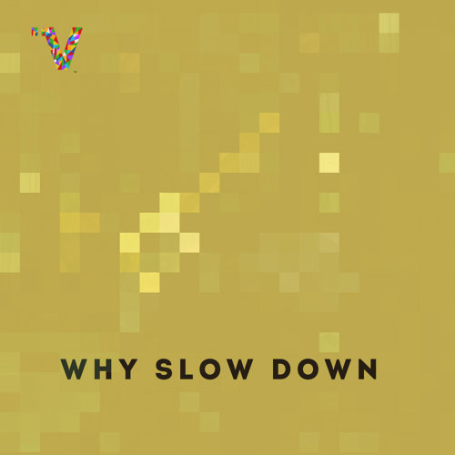 Why Slow Down