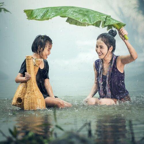 Nature and Yoga 2019 - Loopable Rain Sounds for Ashtanga Flow