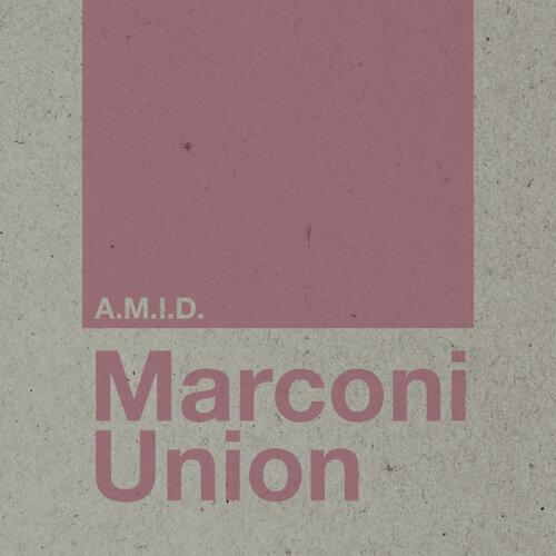 A.M.I.D. - Edit