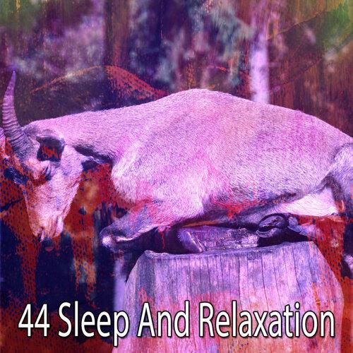 44 Sleep And Relaxation