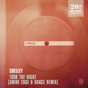 Took The Night (Amine Edge & DANCE Remix) - Amine Edge & DANCE Remix