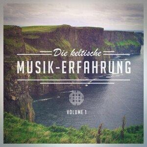 Die keltische Musik-Erfahrung, Vol. 1 (Eine Auswahl an traditioneller keltischer Musik)