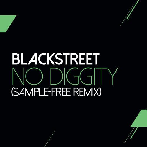 No Diggity - Sam Wilkes & Brian Green Sample Free Remix