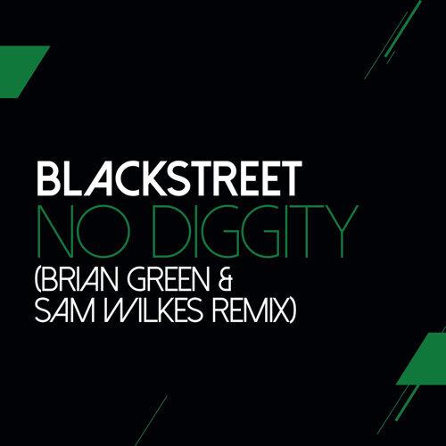 No Diggity - Sam Wilkes & Brian Green Remix