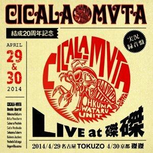 CICALA-MVTA結成20周年記念LIVE at磔磔