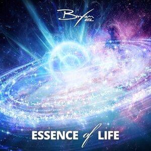 Essence Of Life
