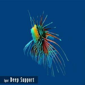 Deep Support