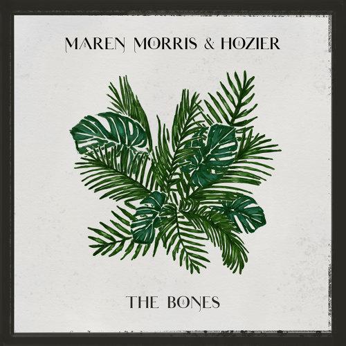 The Bones - with Hozier