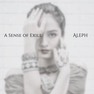 A Sense Of Exile