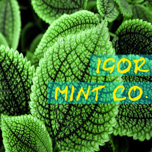 Mint Co.