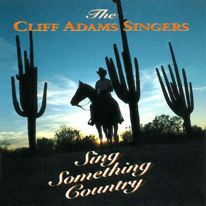 Sing Something Country