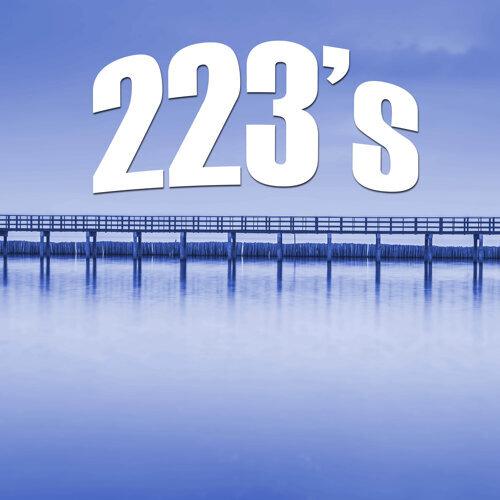 223's (Instrumental)