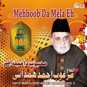 Mehboob da Mela Eh, Vol. 5 - Live Mehfil