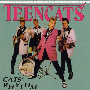 Cats Rhythm