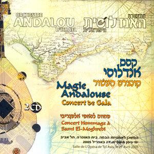 Magie Andalouse - Concert De Gala