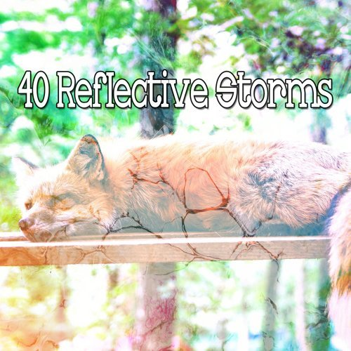 40 Reflective Storms