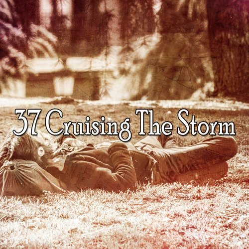 37 Cruising the Storm