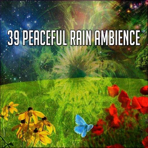 39 Peaceful Rain Ambience