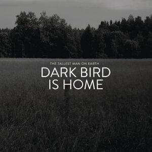 Dark Bird Is Home