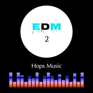 EDM, Vol. 2