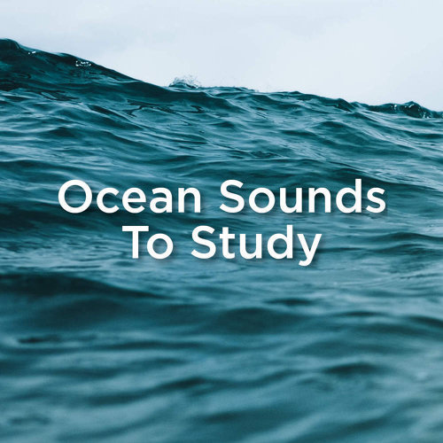 Ocean Sounds To Study