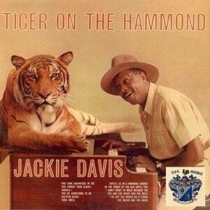 Tiger On the Hammond