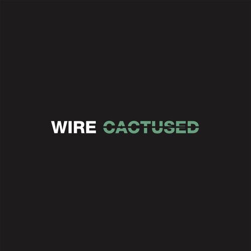 Cactused