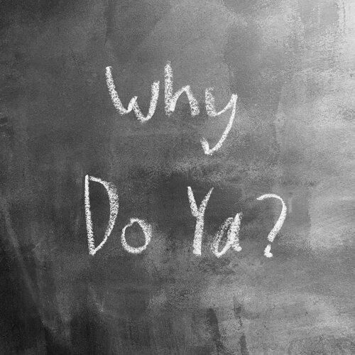 Why Do Ya?