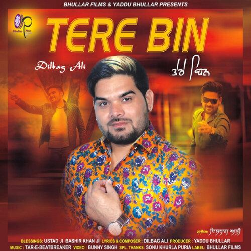 Tere Bin - Single