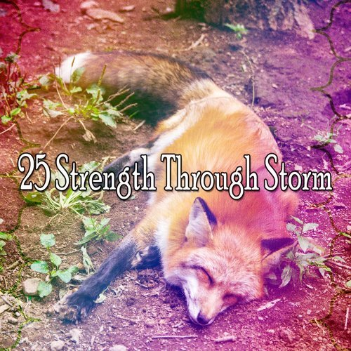25 Strength Through Storm