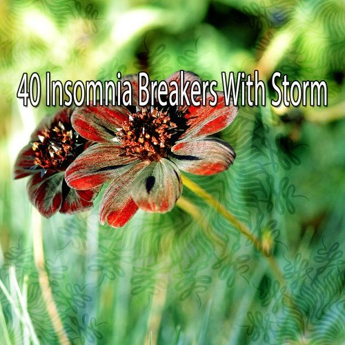 40 Insomnia Breakers with Storm