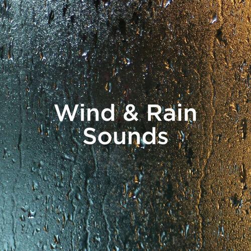 Wind & Rain Sounds