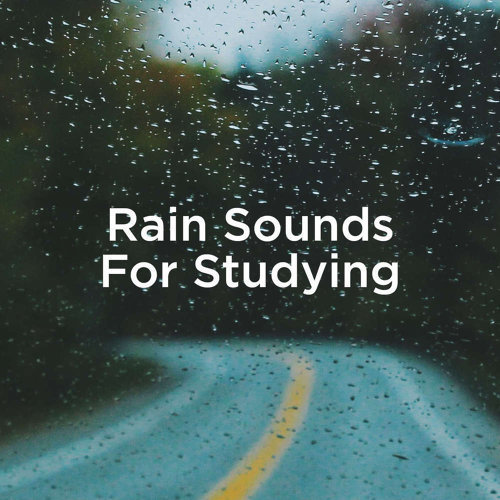 Rain Sounds For Studying