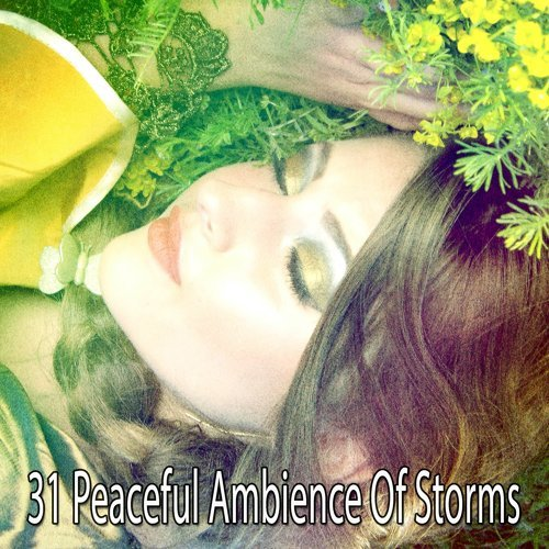 31 Peaceful Ambience of Storms