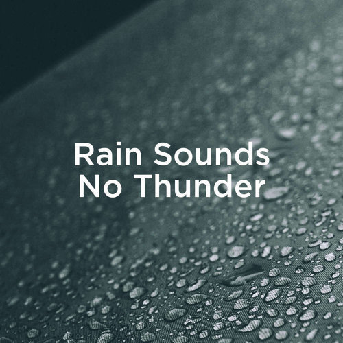 Rain Sounds No Thunder