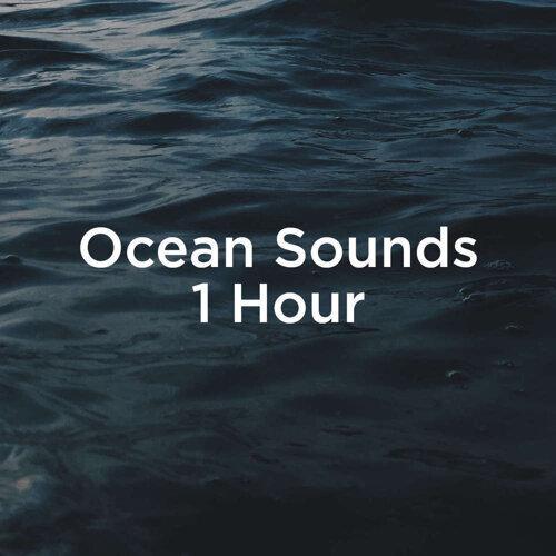 Ocean Sounds 1 Hour